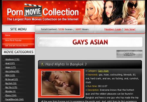 Asian Gays Porn Movie Collection