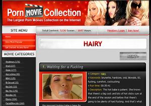 Hairy Porn Movie Collection