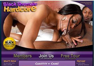 ... best black transsexual models in hardcore action only. Porn Site Detail
